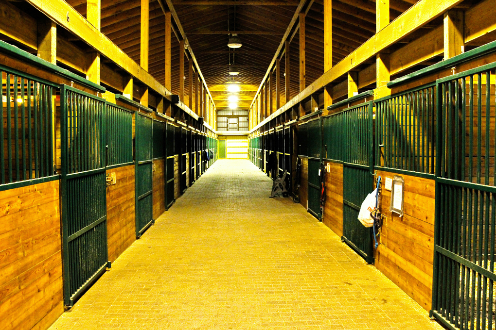 Barn aisle with brick pavers