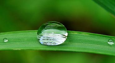water_drop.jpg