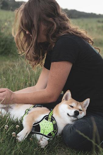 Massage chien ALT