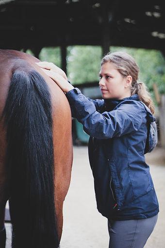 Massage cheval ALT