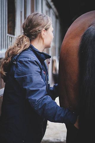 Perform'horse ALT