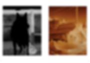Screen Shot 2020-02-23 at 14.06.16.png