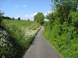 Upton Road in Summer