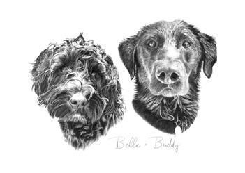 Belle & Buddy.jpg