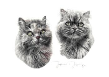 Jasmine & Jessica.jpg