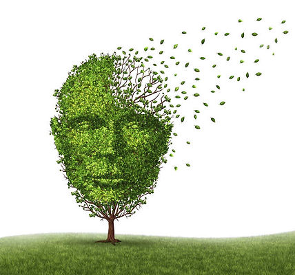 Cognitive Assessment, Geriatrician, Dr Ali Kosari