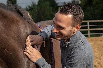 Cheval   Masseur Equin Canin