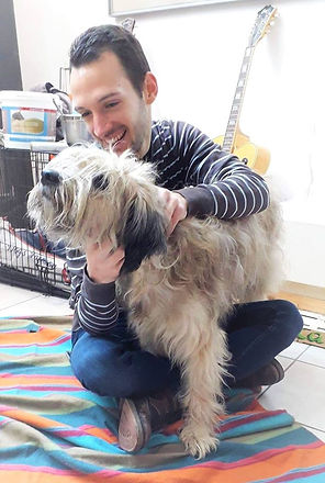 Chien   Masseur Equin Canin