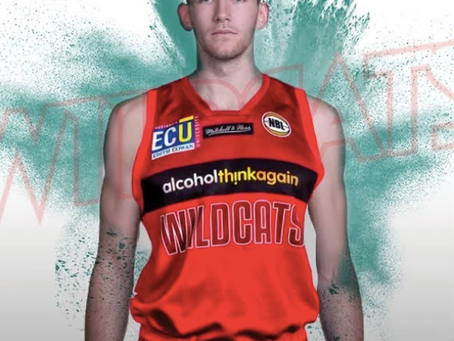 Will Magnay joins the Perth Wildcats