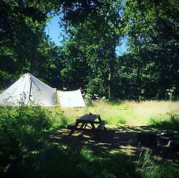 Meadow for One - Camp in your own private meadow with Amber's Bell Tents at Mannington Hall - Norfolk and UK Glamping
