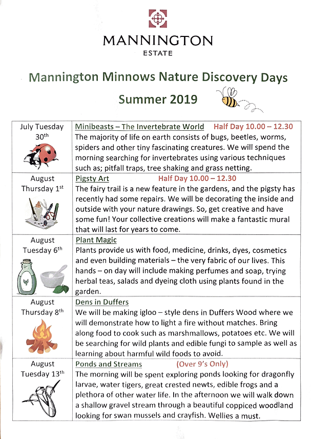 Mannington Minnows 2019 Timetable.png