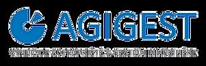 Logo Agigest_edited_edited_edited.png