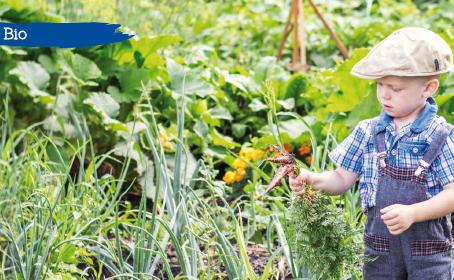 La biodynamie, l'agriculture qui soigne la Terre