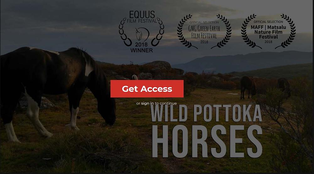 Captura de pantalla de la plataforma Horse TV