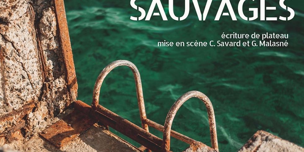 LE VOL DES OIES SAUVAGES SAM 8 JUIN 2019 19H