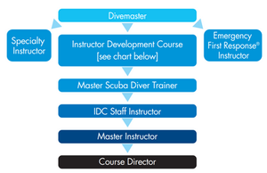 PADI IDC Staff Instructor