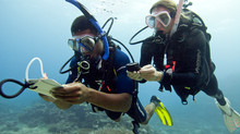 Underwater Navigation - Mastering the Skills