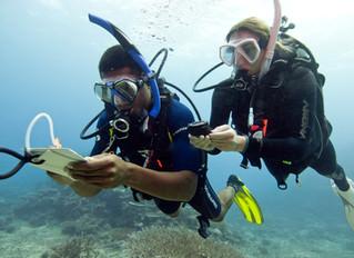 Underwater Navigation - Mastering the Skills