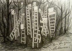 progetto scale nel bosco