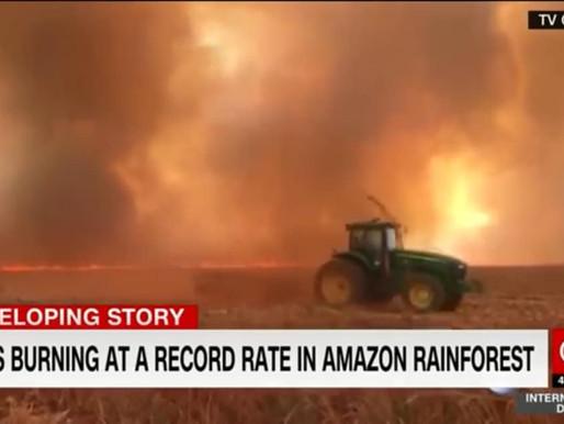 Việt Nam liên quan như thế nào đến cháy rừng amazon?