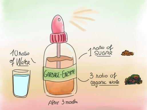Cách làm Enzyme từ rác nhà bếp (garbage enzyme)