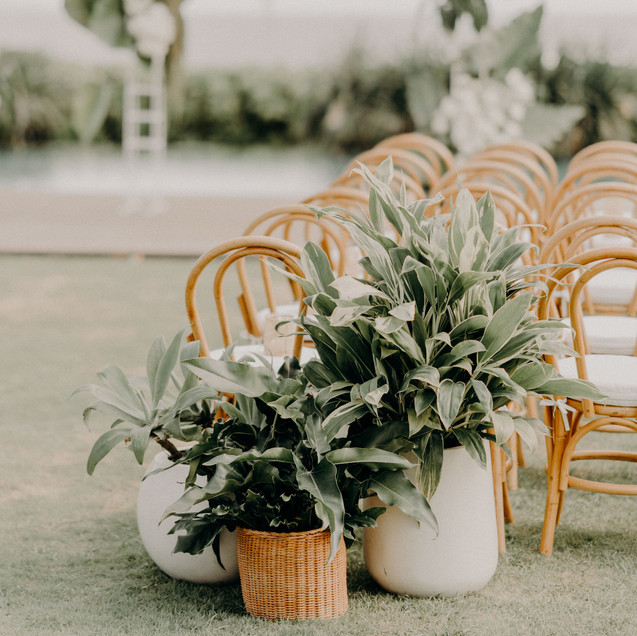 Wedding-A&M_847.jpg