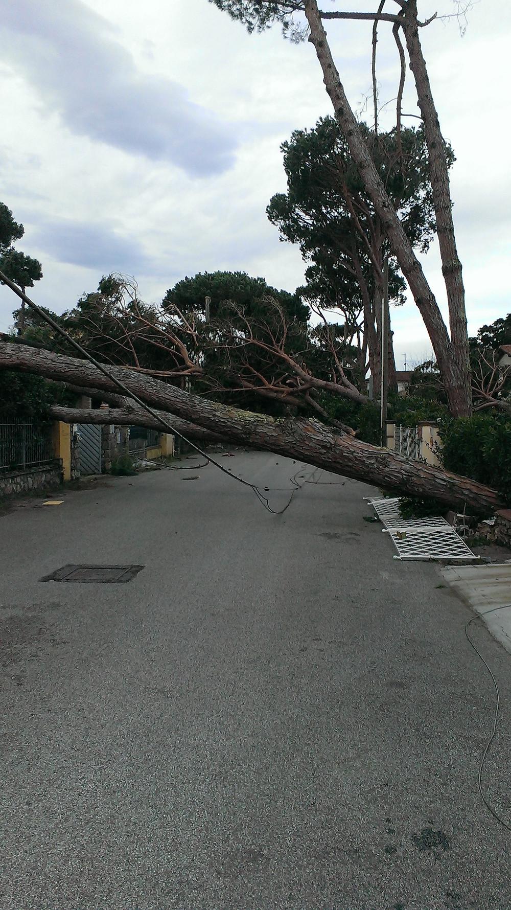 via Palestro 5 Marzo 2015.jpg