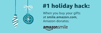 Amazon holiday email banner.png