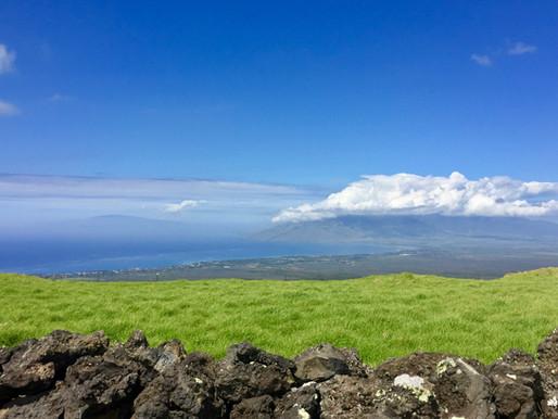 Aloha Hawaii!