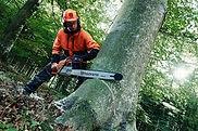 Tree looping