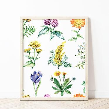 Pollinator Pattern Mockup.jpg