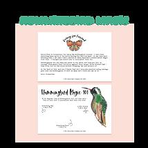 Hummingbird Magic.png