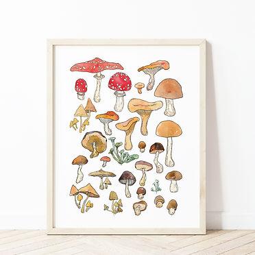 Mushroom Chart Mockup.jpg