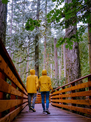 A round trip at the beautiful Vancouver Island Canada getting back to nature