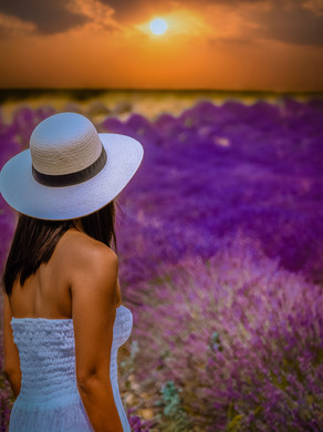 5 days in the Provence France