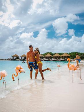 Waar Flamingo's spotten op Aruba