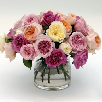 nőnapi snails rózsa