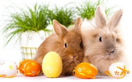 húsvéti tojás és húsvéti nyuszi
