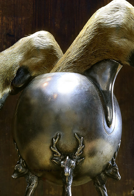 """Clove 'n' Hoof"" (detail), photograph by Christian Madrigal"