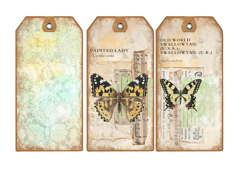 NEW BUTTERFLY TAG3.jpg