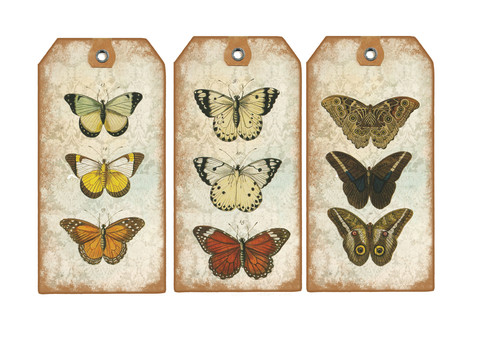 NEW BUTTERFLY TAG4.jpg