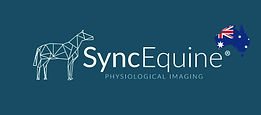 SyncEquine.jpg