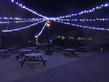 Longleat Festival of Light Lamp & Canopy