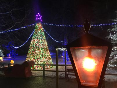 Longleat Festival of Light Grotto 2017