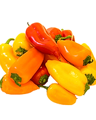 Sweet-Peppers.png