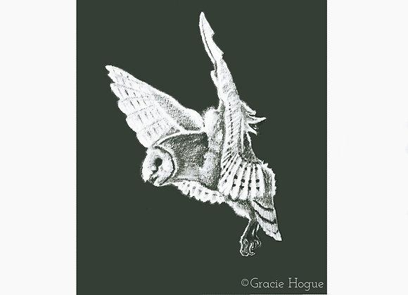 """""""Moon Shadow"""" Barn Owl (Pencil)"""