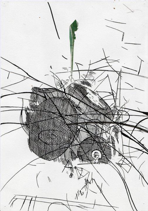 Botanical, 2008