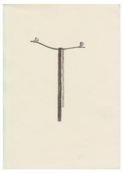 line, 2006