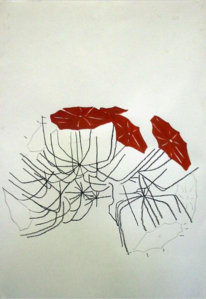 2D-2005-03+