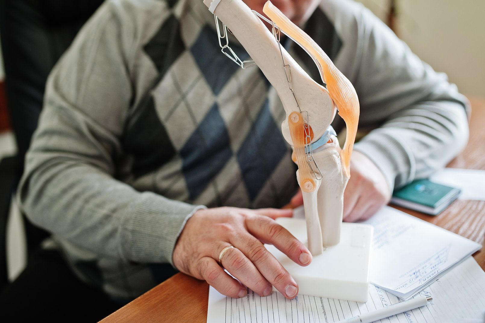 artificial-human-knee-joint-model-in-med